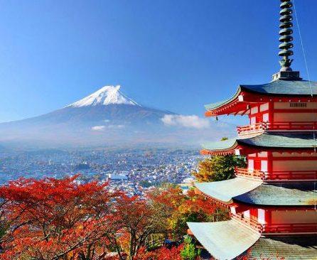 Japón país de matices y contrastes