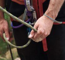 ¿Por qué es importante utilizar buenas herramientas para la arboricultura?